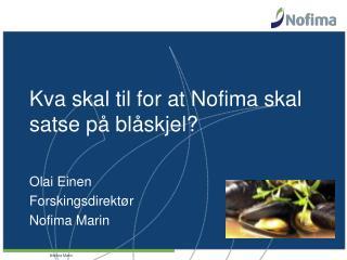 Kva skal til for at Nofima skal satse på blåskjel?
