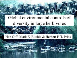Global environmental controls of diversity in large herbivores