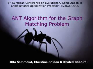 ANT Algorithm for the Graph Matching Problem
