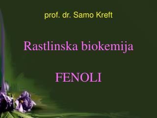 prof. dr. Samo Kreft