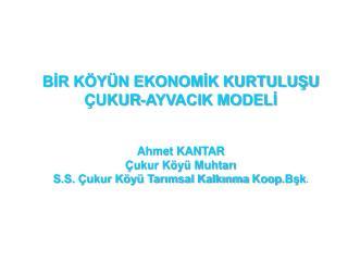 BİR KÖYÜN EKONOMİK KURTULUŞU ÇUKUR-AYVACIK MODELİ Ahmet KANTAR Çukur Köyü Muhtarı