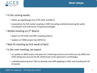 SWE IG meeting – 25 February 2014