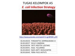 TUGAS KELOMPOK A5