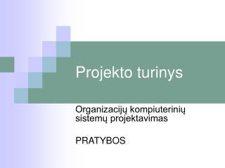 Projekto turinys