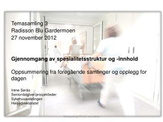 Temasamling 3 Radisson  Blu  Gardermoen 27 november 2012