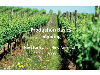 Production Basics: Seeding