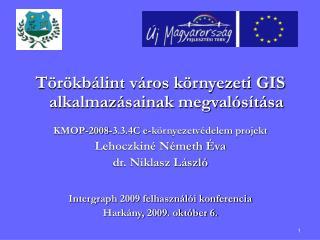 Törökbálint város környezeti GIS alkalmazásainak megvalósítása