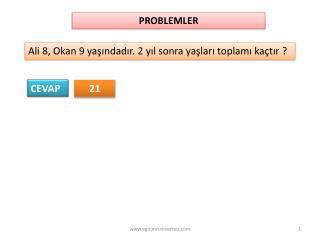 PROBLEMLER
