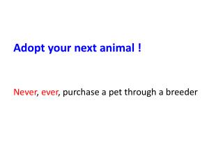 Adopt your next animal !  Never , ever , purchase a pet through a breeder