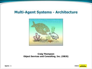 Multi-Agent Systems - Architecture