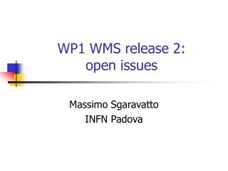 WP1 WMS release 2:        open issues