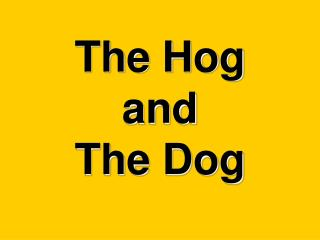 The Hog  and The Dog