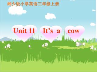 湘少版小学英语三年级上册