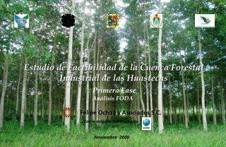 Estudio de Factibilidad de la Cuenca Forestal Industrial de las Huastecas