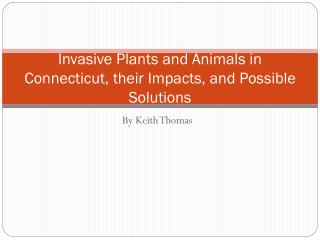 Invasive Plants and Animals in Connecticut, their Impacts, and Possible Solutions