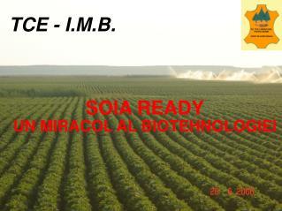 TCE - I.M.B.