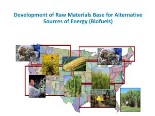 Development of Raw Materials Base for Alternative Sources of Energy (Biofuels)