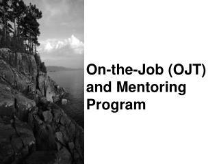 On-the-Job (OJT)  and Mentoring Program