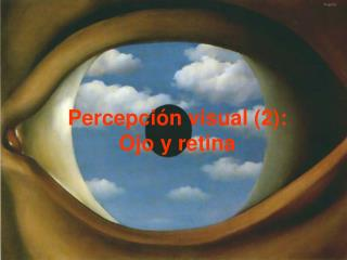 Percepción visual (2): Ojo y retina