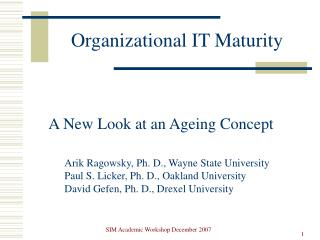 Organizational IT Maturity