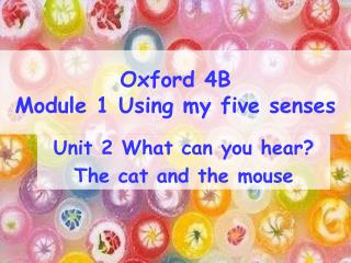 Oxford 4B  Module 1 Using my five senses