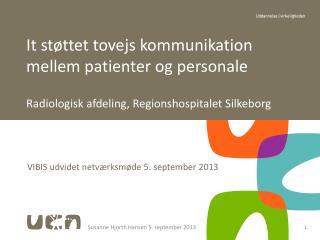 VIBIS udvidet netværksmøde 5. september 2013