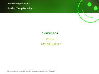 Seminar 4 Øvelse  Tæt-på ulykker