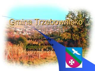 Gmina Trzebownisko