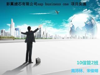 彩翼滤芯有限公司 sap business one  项目实施