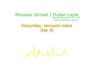 Miroslav Strnad / Dušan Lazár