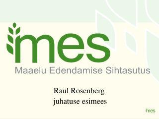 Raul Rosenberg  juhatuse esimees