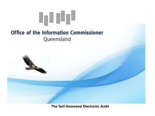 The Self-Assessed Electronic Audit