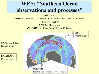 "WP 5: ""Southern Ocean observations and processes"""
