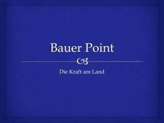 Bauer Point