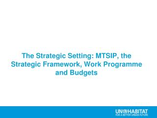 The Strategic Setting: MTSIP, the Strategic Framework, Work Programme and Budgets