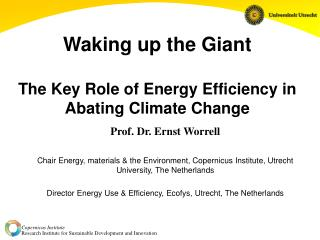 Waking up the Giant The Key Role of Energy Efficiency in Abating Climate Change