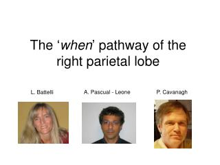 The ' when ' pathway of the right parietal lobe