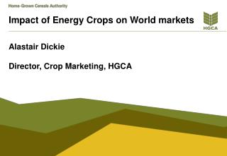 Impact of Energy Crops on World markets