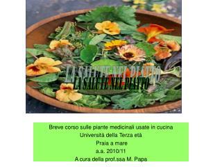 Breve corso sulle piante medicinali usate in cucina Università della Terza età   Praia a mare