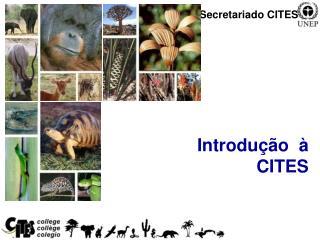 Introdução  à  CITES