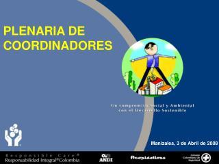 PLENARIA DE COORDINADORES