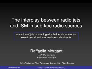 The interplay between radio jets and ISM in sub-kpc radio sources