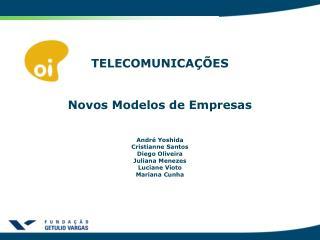 TELECOMUNICAÇÕES  Novos Modelos de Empresas