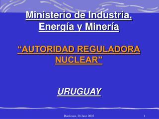 """Ministerio de Industria, Energía y Minería """"AUTORIDAD REGULADORA NUCLEAR"""" URUGUAY"""