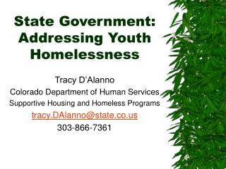 State Government: Addressing Youth Homelessness