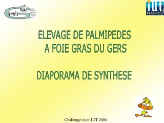 ELEVAGE DE PALMIPEDES  A FOIE GRAS DU GERS DIAPORAMA DE SYNTHESE