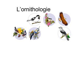 L�ornithologie
