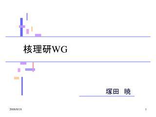 核理研 WG