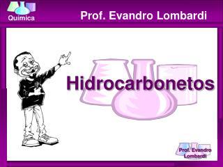 Prof. Evandro Lombardi