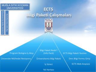 ECTS  Bilgi Paketi Çalışmaları